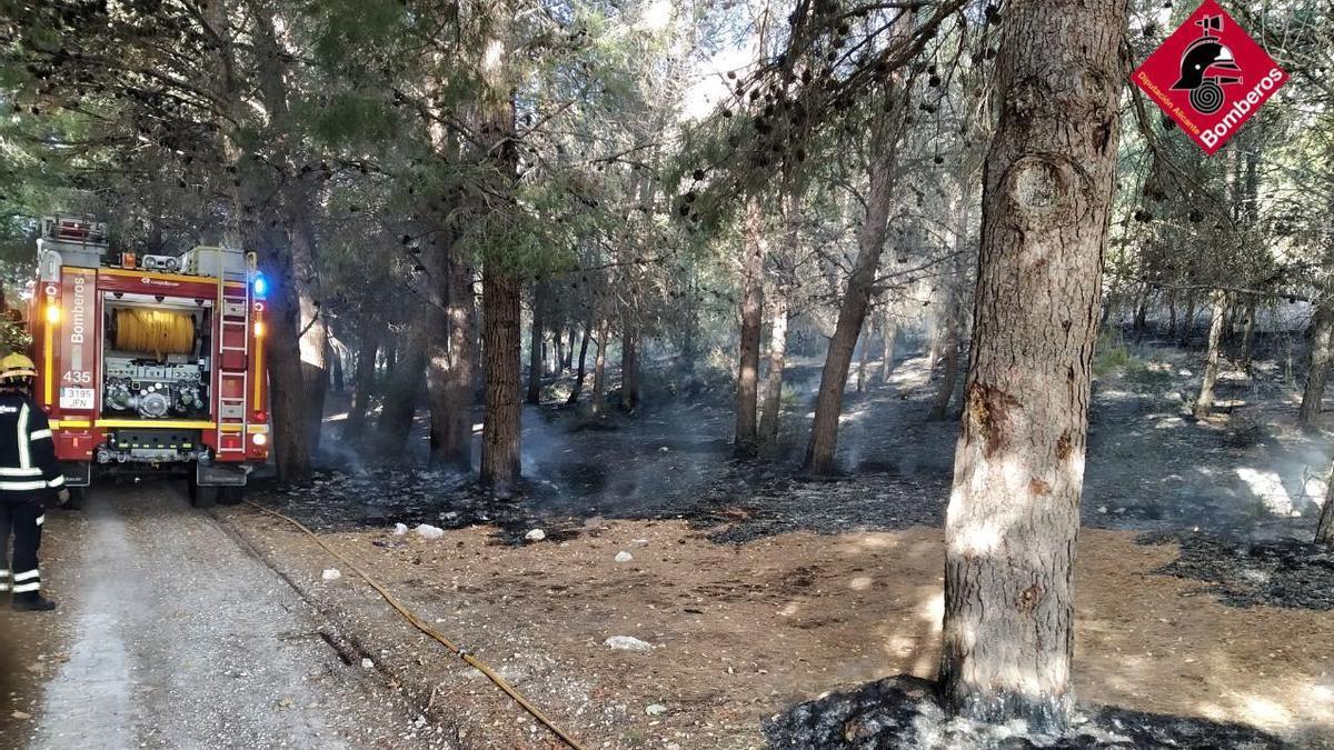 Los bomberos apagando el fuego en la pinada.