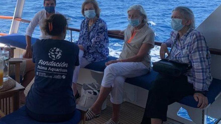 Altkönigin Sofía begleitet Schildkrötenretter vor Mallorca