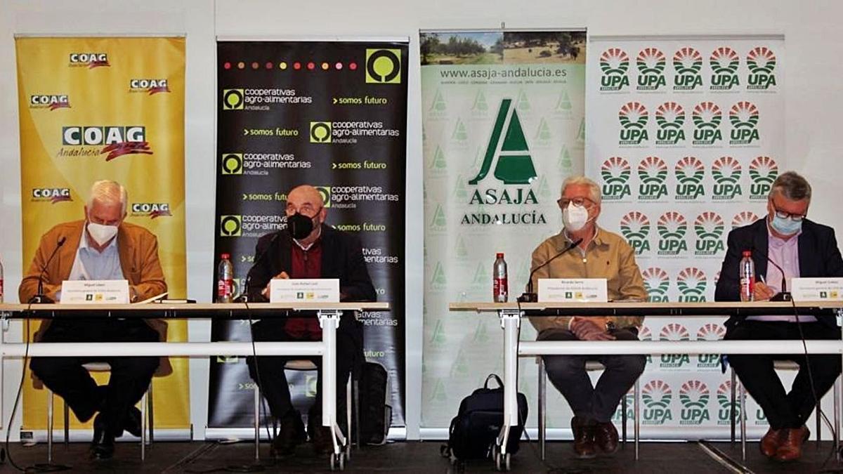 Miguel López (COAG), Juan Rafael Leal (Cooperativas), Ricardo Serra (Asaja) y Miguel Cobos (UPA). | EUROPA PRESS