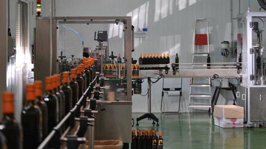 Sietes aceites producidos en la comarca de Priego, galardonados en el concurso internacional Cinve