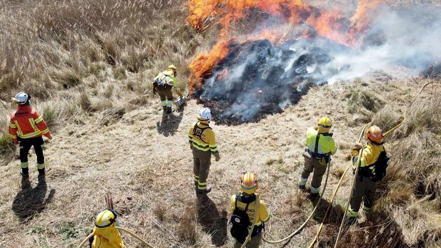 """Bomberos colaboran en una quema controlada en Requena para alejar una """"superpoblación"""" de conejos"""