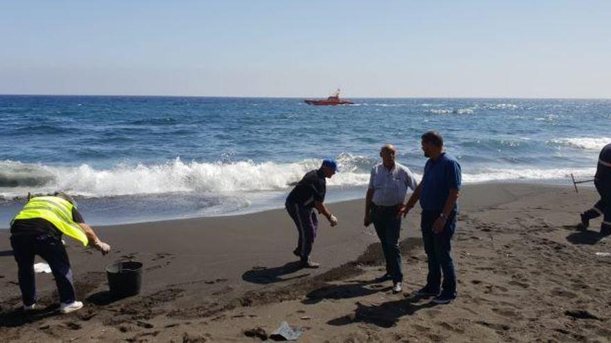 Retiran unos 20 kilos de restos de piche y arena de la playa de San Borondón