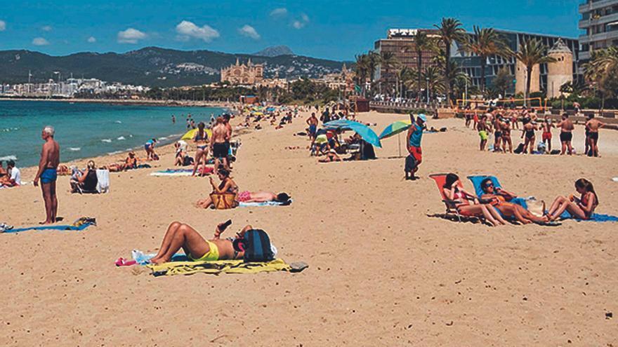 Delincuentes de Son Gotleu y La Soledat se desplazan a robar en Can Pere Antoni
