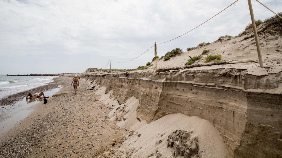 Aspecto reciente del devastado cordón dunar de la playa de la Garrofera en El Saler.