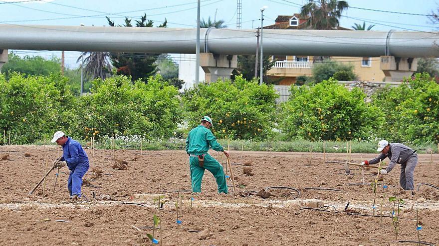 El Gobierno concede una tregua al trasvase Tajo-Segura hasta 2026