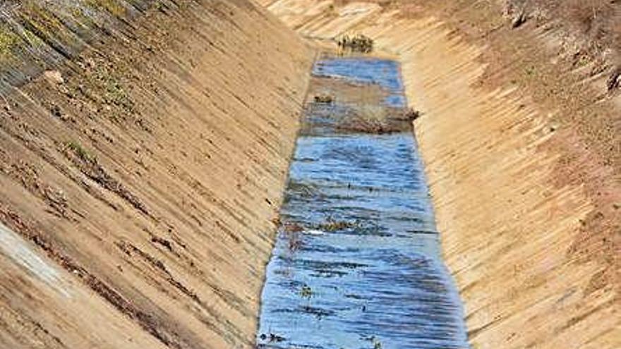 La Comunidad de Regantes limpia de lodos y maleza el   canal Toro-Zamora
