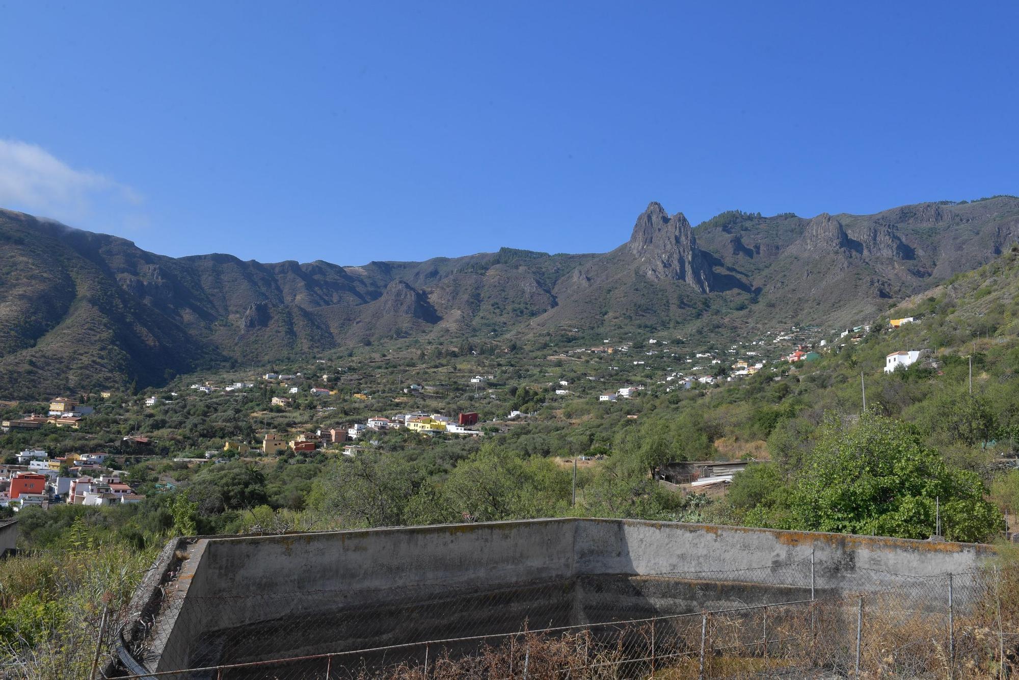Suelta de milano negro en Valsequillo
