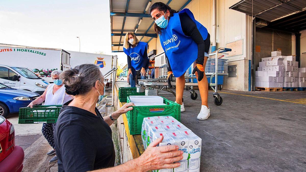 Voluntarias trabajando en el Banco de Alimentos en Mercapalma.
