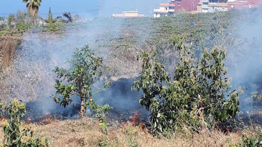 Tres quemas de rastrojos sin control se han sofocado en Tenerife en 48 horas