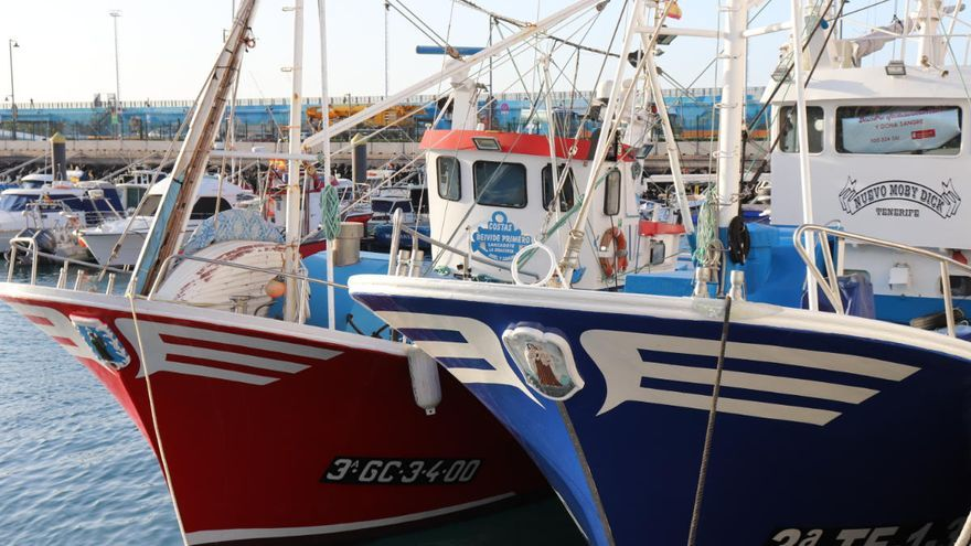 Pesca amplía las atribuciones profesionales del título de patrón local
