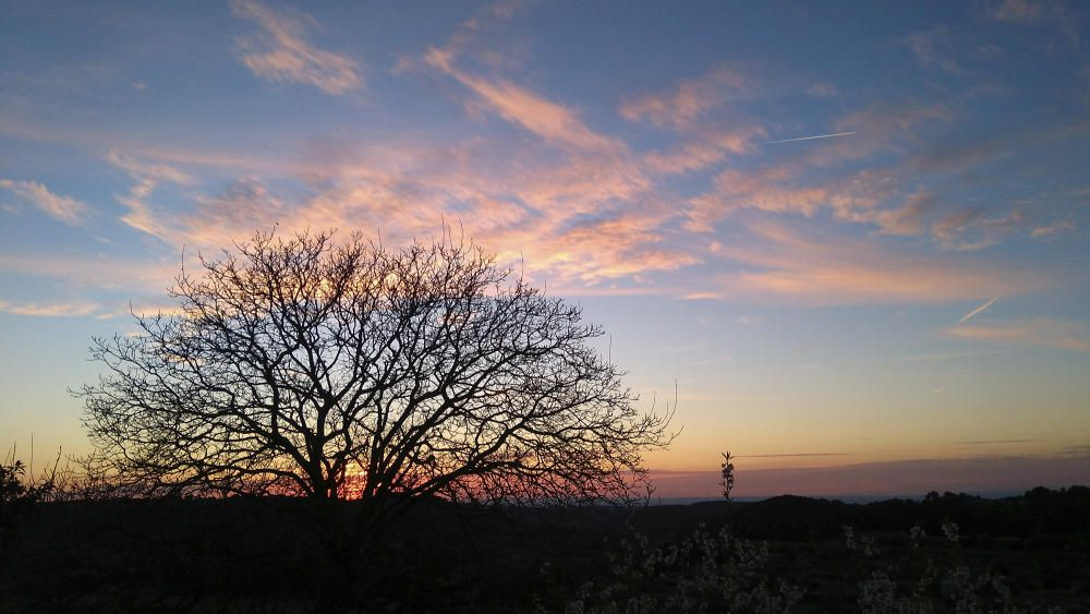 La Conca de Barberà. El sol ja marxa, però ens deixa aquests tons tan bonics, aquests colors ataronjats, vermellosos i amb aquests núvols que també volen marxar.