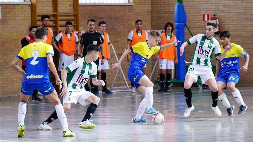 El Córdoba Futsal debutará ante el Peña Real Madrid  y el Adecor frente al Betis FS