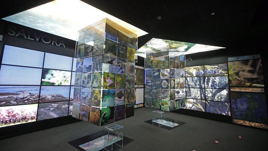 Museo das Illas Atlánticas