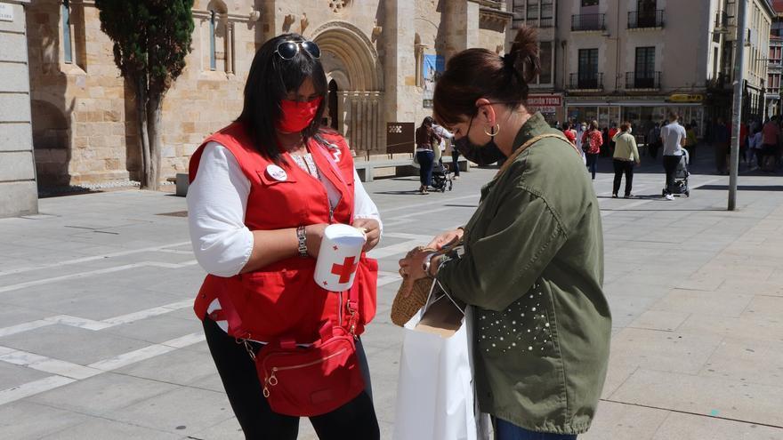 Cruz Roja Zamora recauda 3.400 euros en el Día de la Banderita