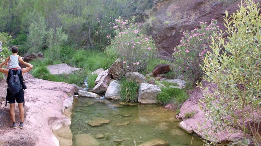 Cinco rutas para olvidarte del calor en la C. Valenciana