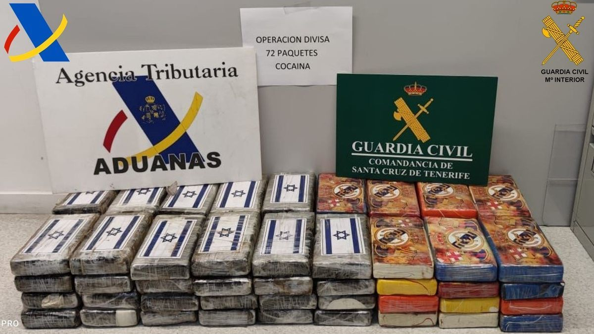 Cocaína interceptada en un buque en el puerto de Santa Cruz de Tenerife