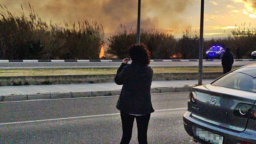 Tres incendios en Fortaleny y Alzira junto a cauces fluviales
