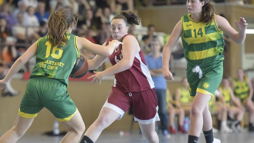 La federació de bàsquet clourà campionats de base si s'allarga l'estat d'alarma