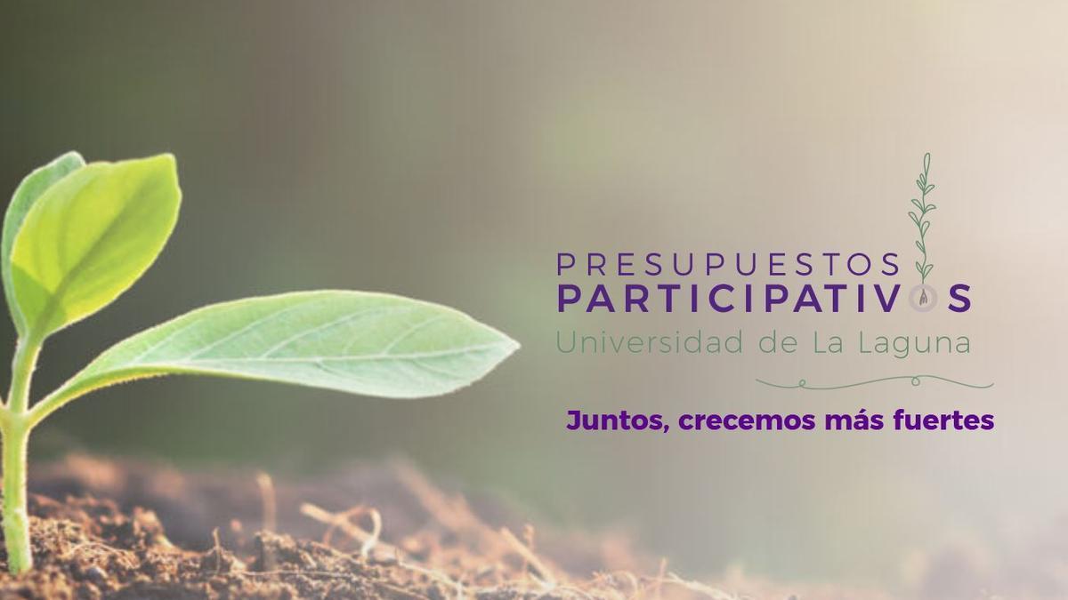La página web de los presupuestos participativos.
