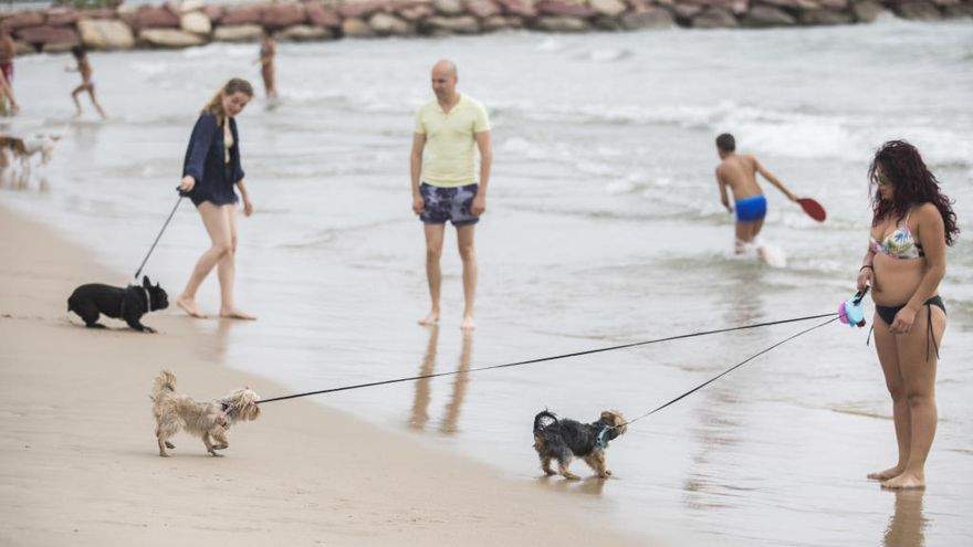 La playa de Pinedo tendrá una pasarela mirador para ciclistas