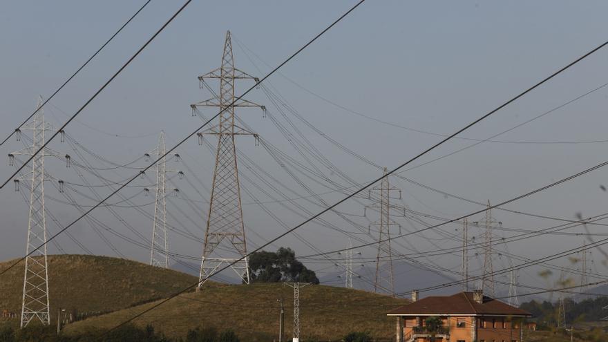 La Fiscalía se querella contra Endesa por las aves muertas en líneas eléctricas