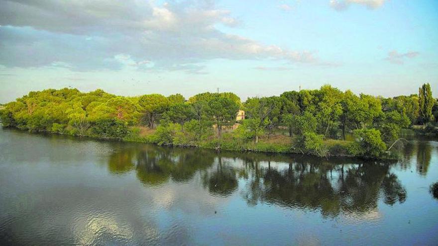 La vida peligra en el tramo urbano del Duero en Zamora