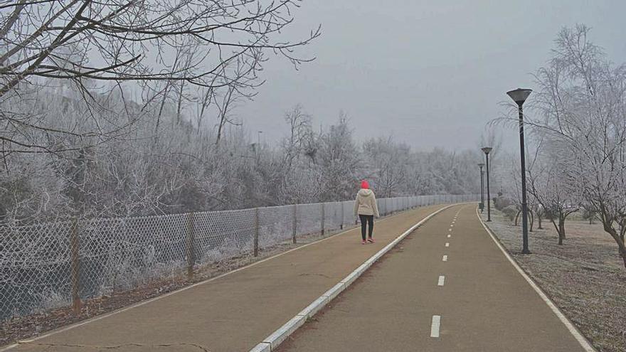 Cencellada en Benavente | Niebla congelada en la ciudad