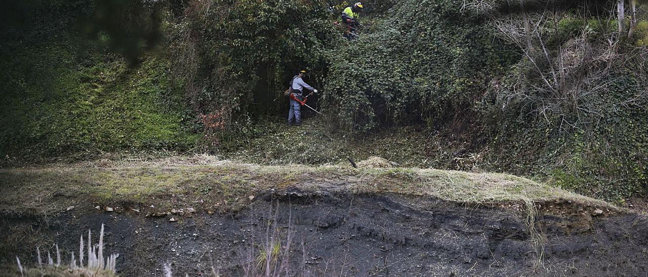 """Labores de limpieza en los terrenos del """"banco malo"""" en González Abarca."""