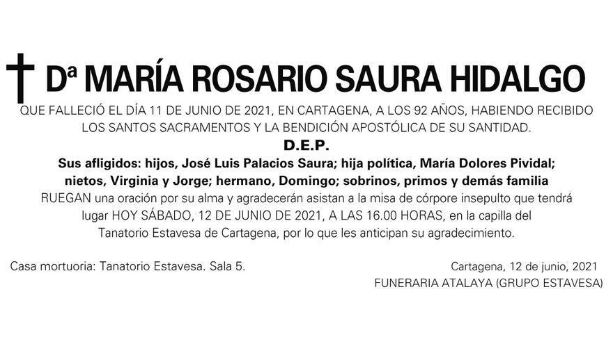 Dª María Rosario Saura Hidalgo