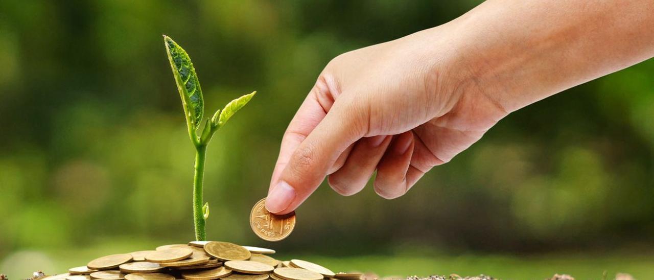 Jordi Sevilla asegura que este será el año de la recuperación económica.
