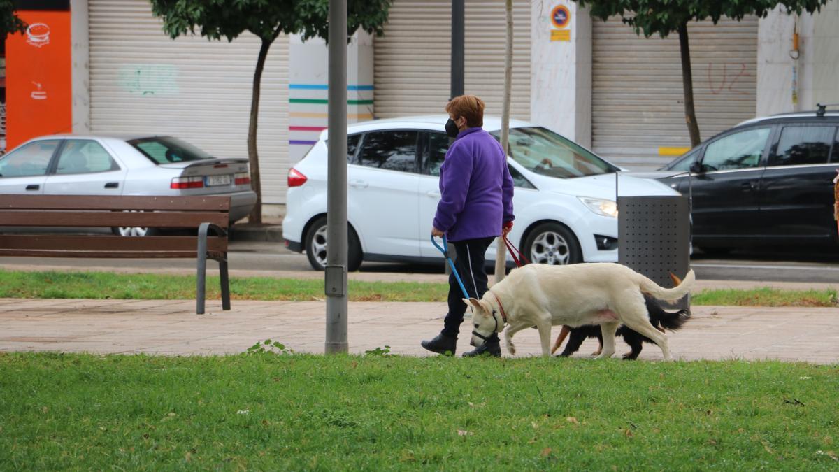 Una mujer pasea con dos perros en Quart