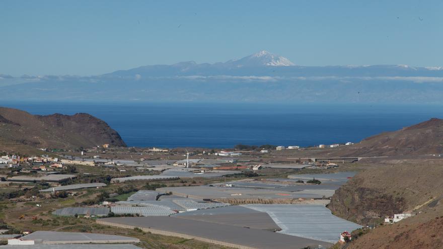 La UE mantiene sin recortes las ayudas agrarias para Canarias hasta 2027
