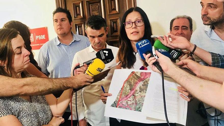 """PSOE e IU aplauden que el TSJA pare la """"aberración"""" de las lindes de Marbella"""