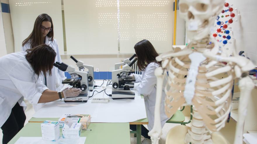 Premios de miles de euros para fomentar la investigación en Bachillerato