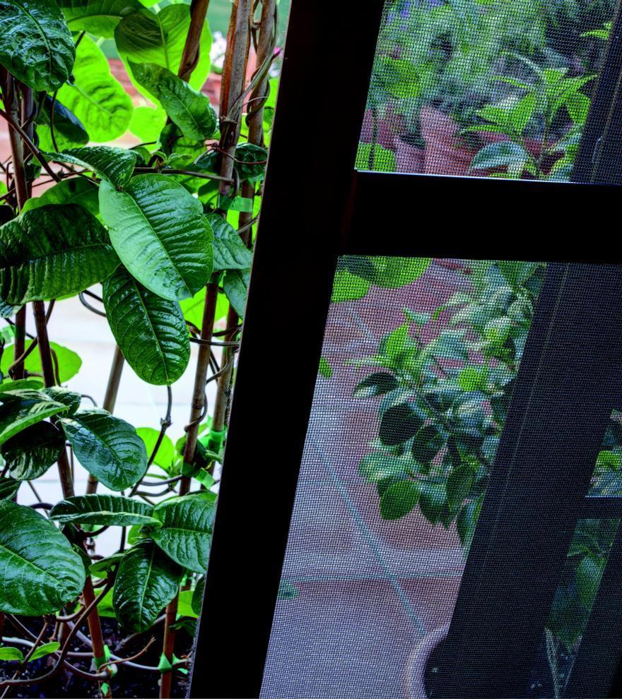 Persax desarrolla la mosquitera PURE que mejora la calidad del aire que entra en casa
