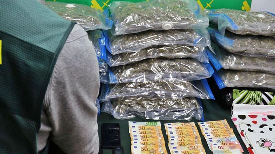 Cae un grupo de asiáticos que cultivaban marihuana a gran escala en Castrillón