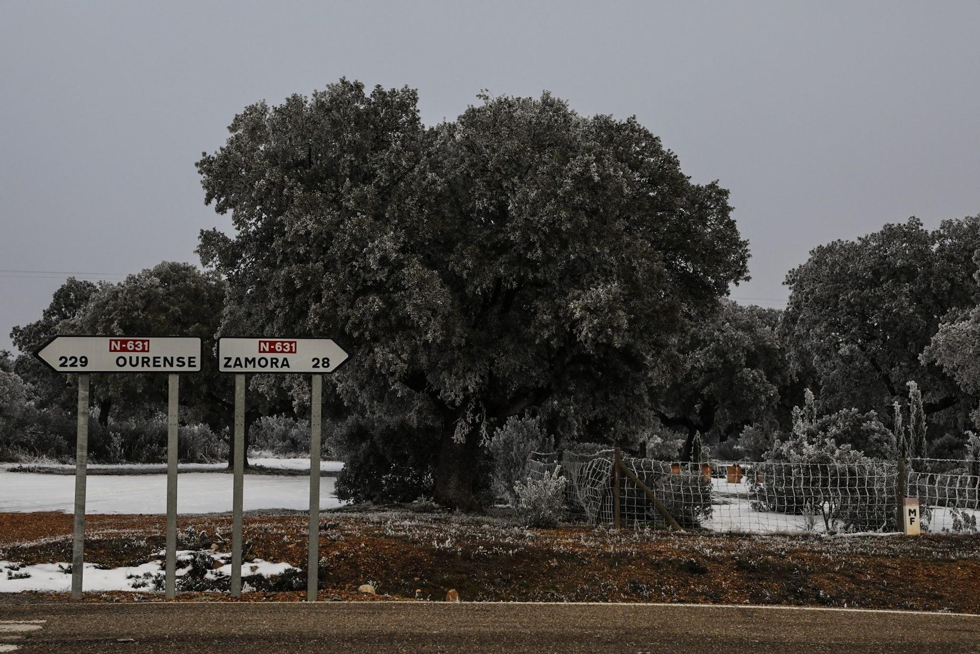 Paisajes de una Zamora escondida bajo la niebla