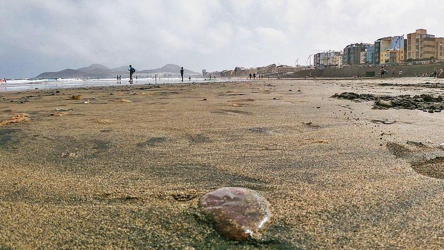 Ciudad de Mar gestionará Las Canteras con datos científicos a gran escala