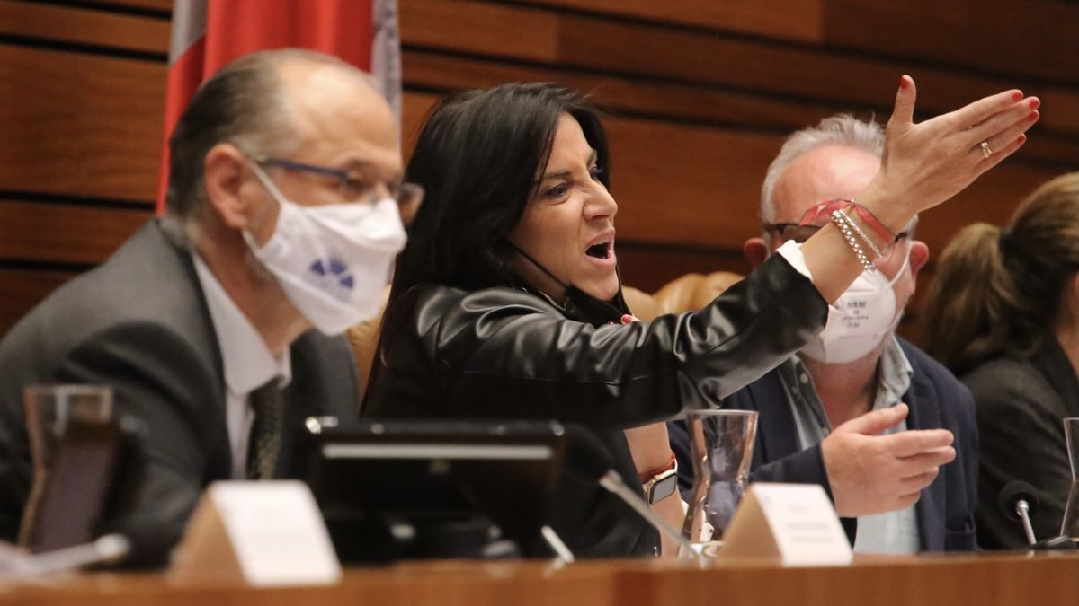 La procuradora socialista, Ana Sánchez, en un momento del bronco pleno de las Cortes.