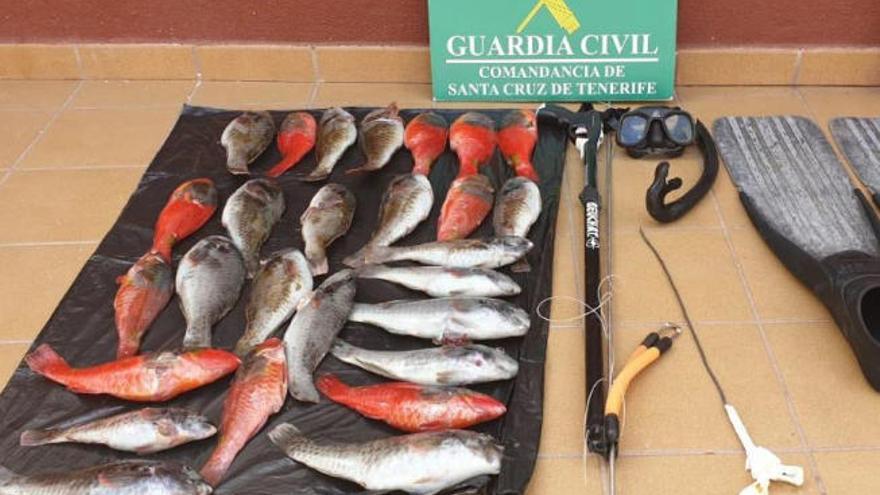 Sorprendido mientras realizaba pesca submarina furtiva en Tenerife