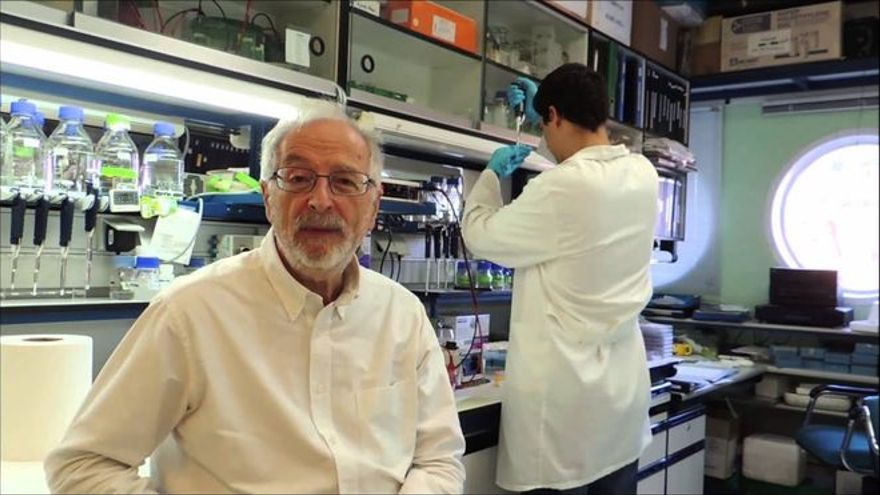 Ponen fecha a la vacuna intranasal española