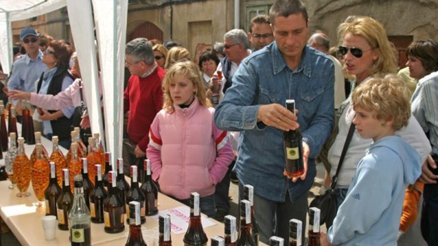 Enoturisme, veure paisatge i beure vins