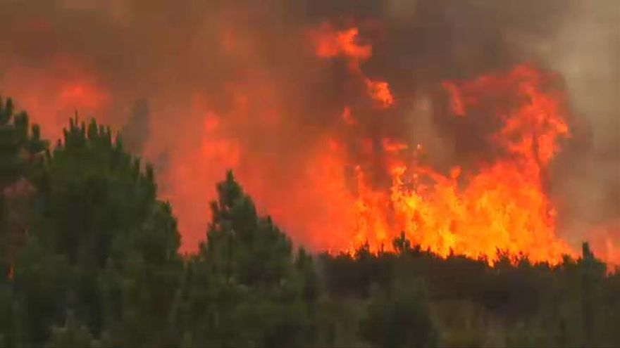 Ya se han quemado más de 6500 hectáreas en los incendios de Ourense