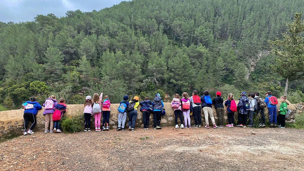 Excursión a es Broll de Buscastell de los alumnos del colegio Guillem de Montgrí..   ASA