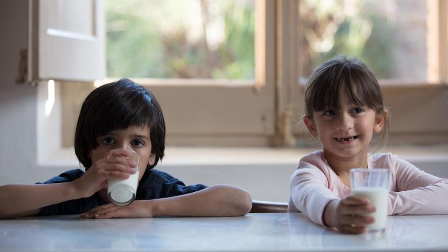 L'Obra Social 'laCaixa' i el Banc dels Aliments impulsen «Cap nen sense bigoti»