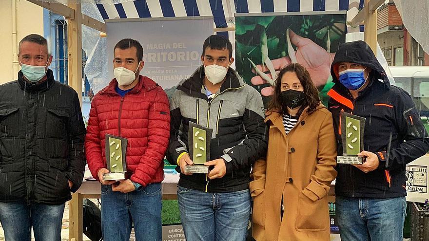 """La finca """"La Villa"""" de Villavaler, en Pravia, ganan el certamen de faba asturiana"""