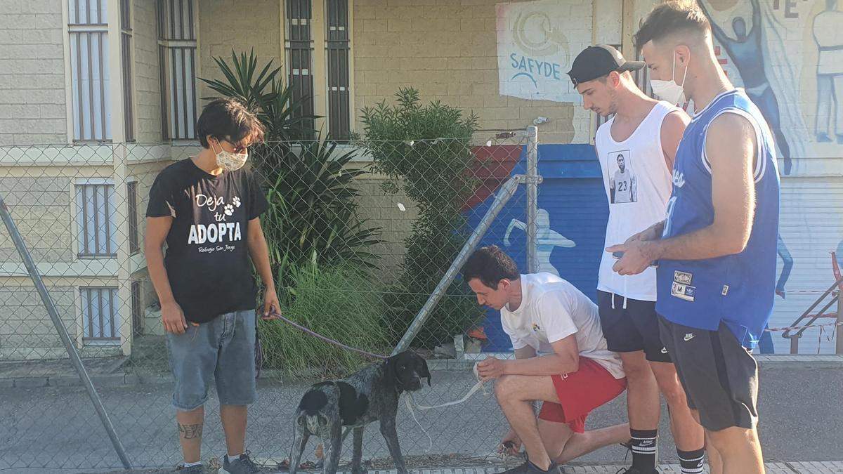 Los jóvenes junto al animal y la voluntaria de la protectora.