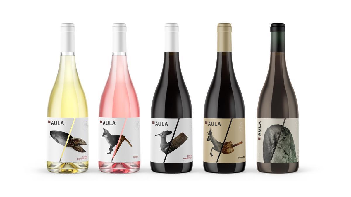 Colección de vinos Aula del Grupo Coviñas.