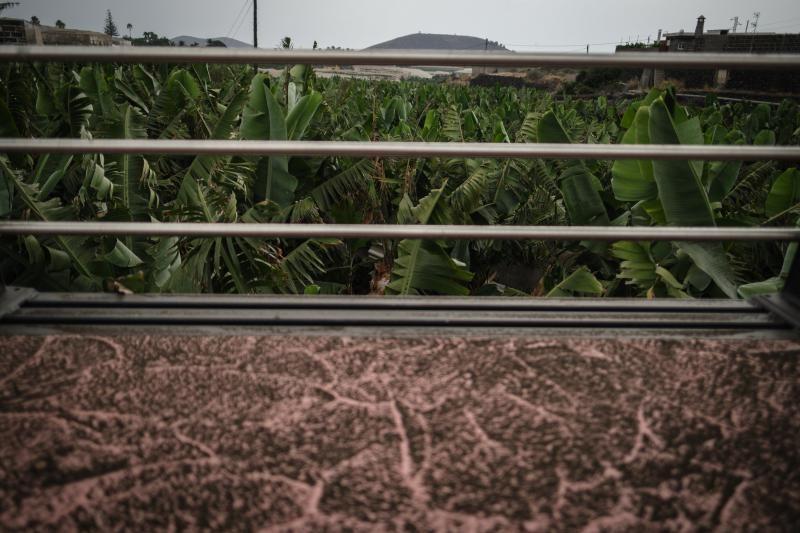 Volcán en Canarias: La ceniza invade todos los rincones
