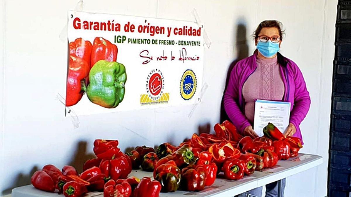 Isabel Ruiz junto a los pimientos representantivos de las variedades cultivadas en el campo de ensayo y de donde saldrán las tres seleccionadas por los hortelanos de la IGP.   E. P.